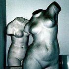 Venus para modelos de Pintor/ra.