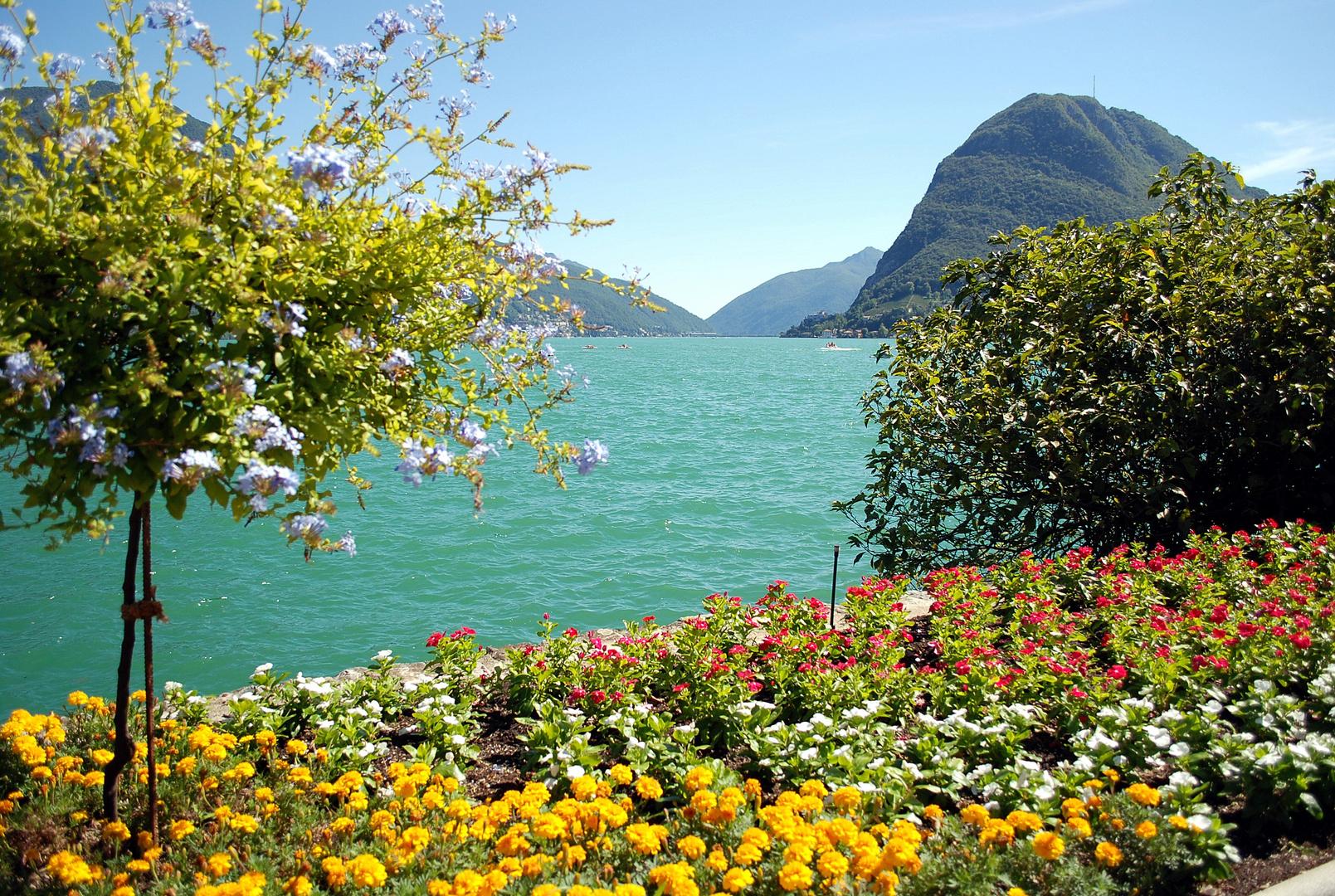 Verano en Lago Maggiore