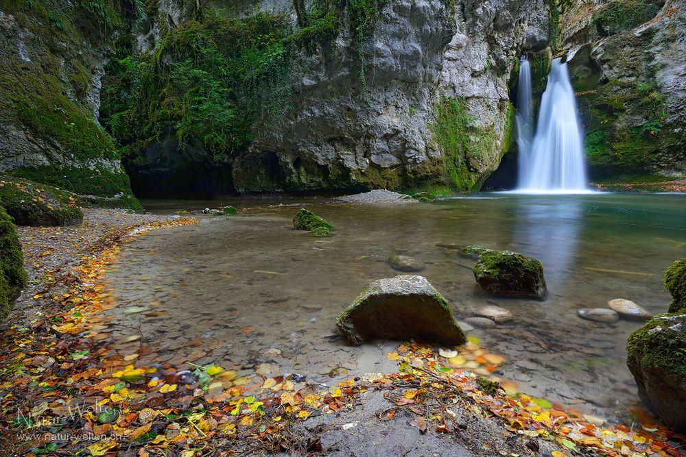 Verborgene Wasserwelt