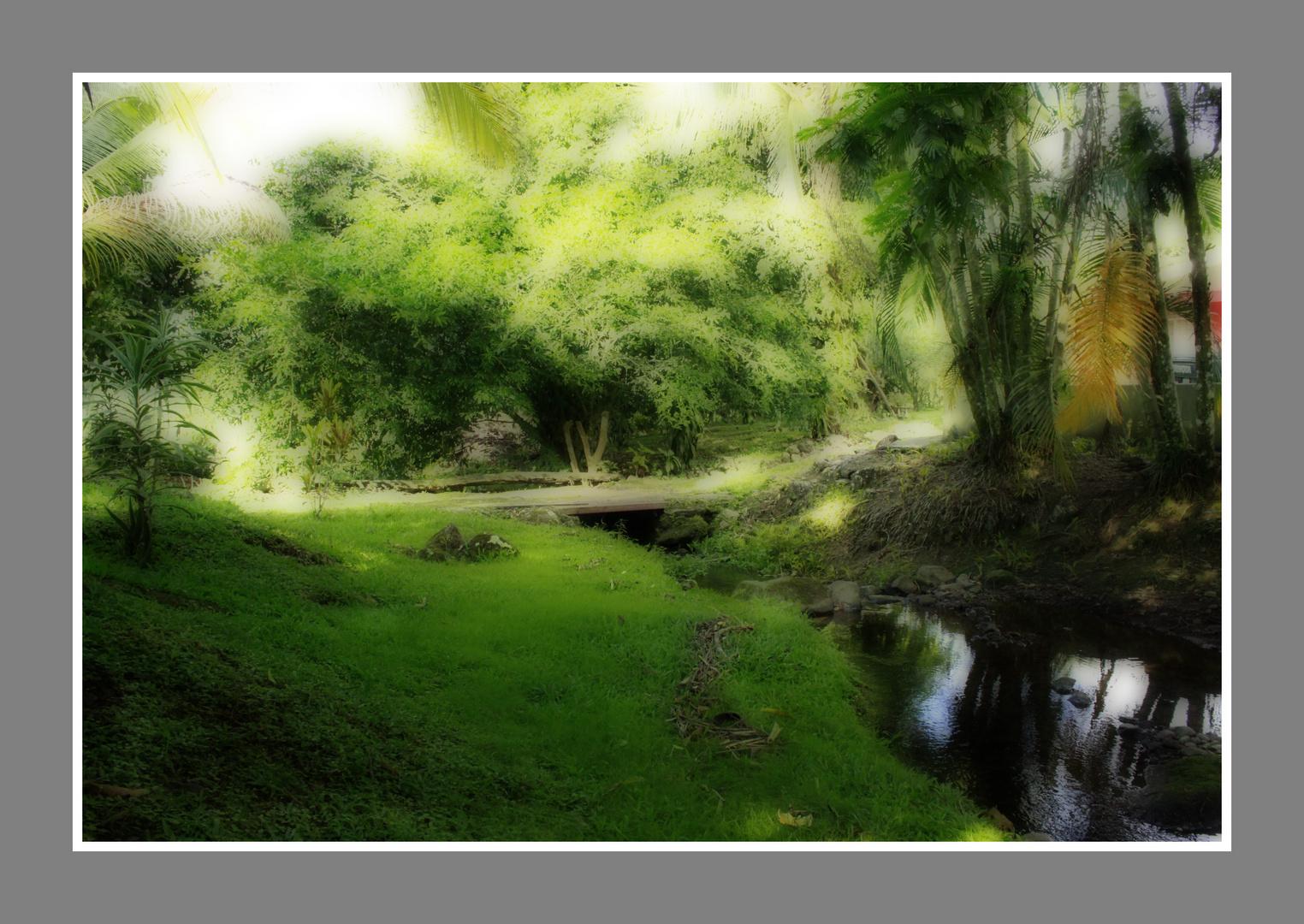 Verde paz