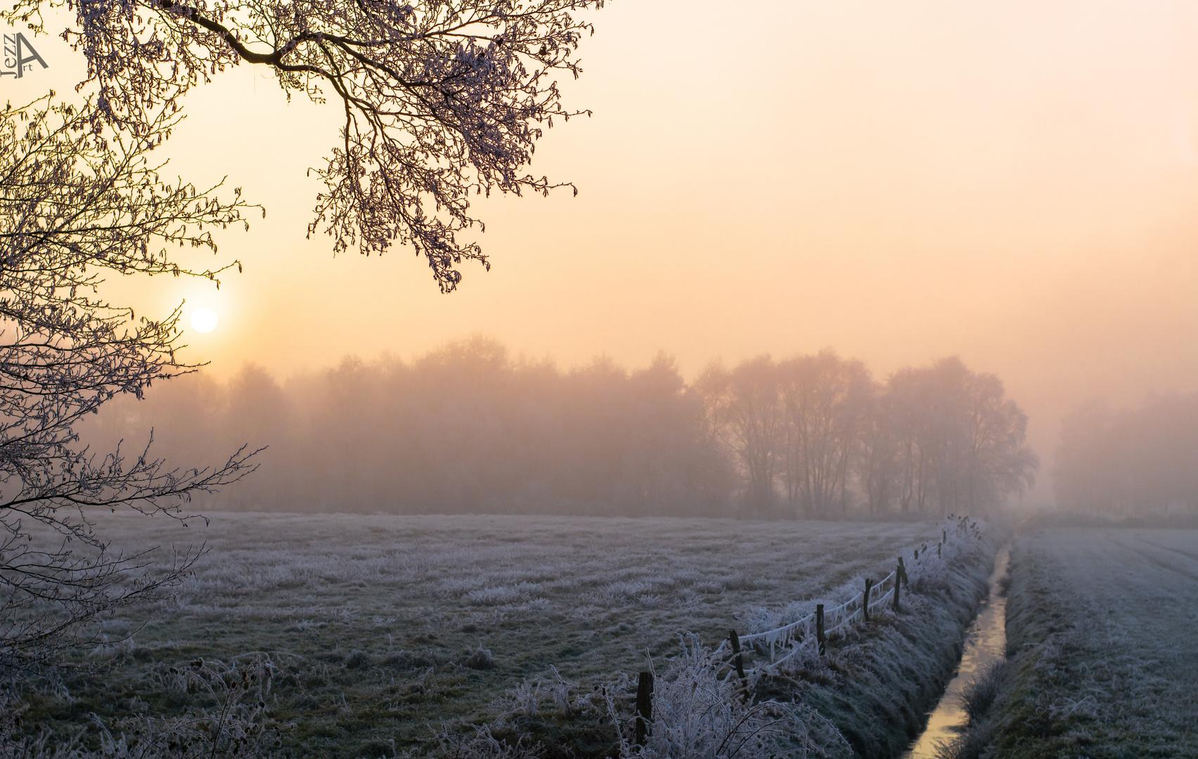 Vereiste Landschaft im Nebel.
