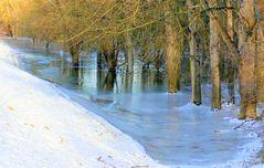Vereistes Rhein-Hochwasser