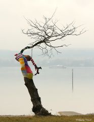 Verfrorener Baum.........
