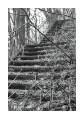 Vergessene Treppe......
