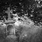 Vergessener Friedhof