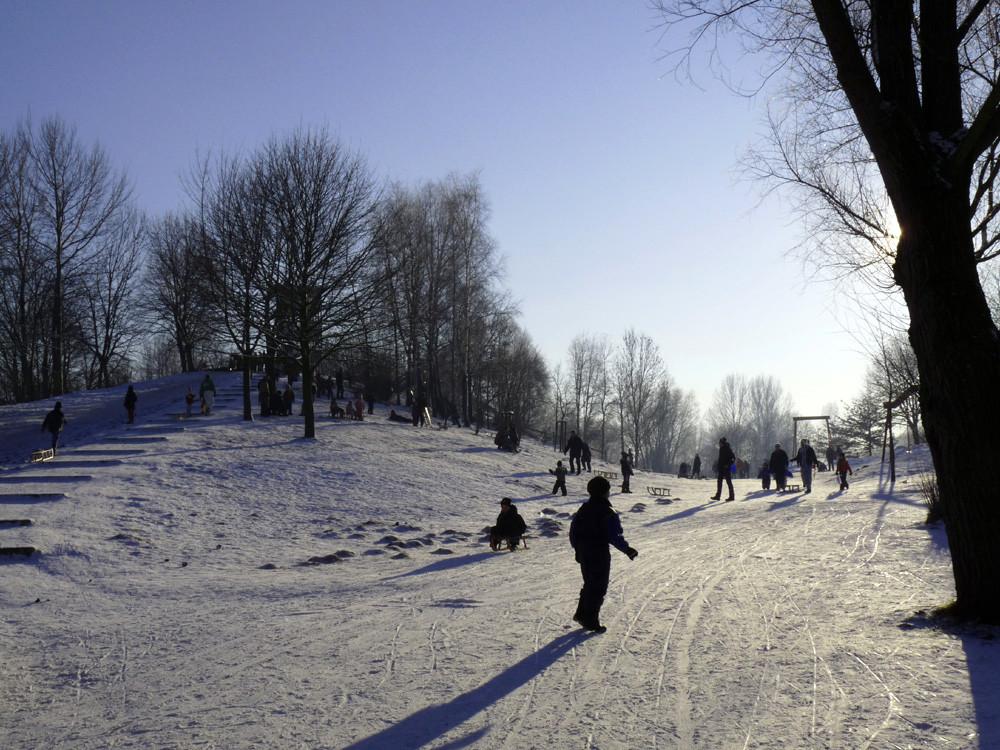 Vergnügen im Schnee