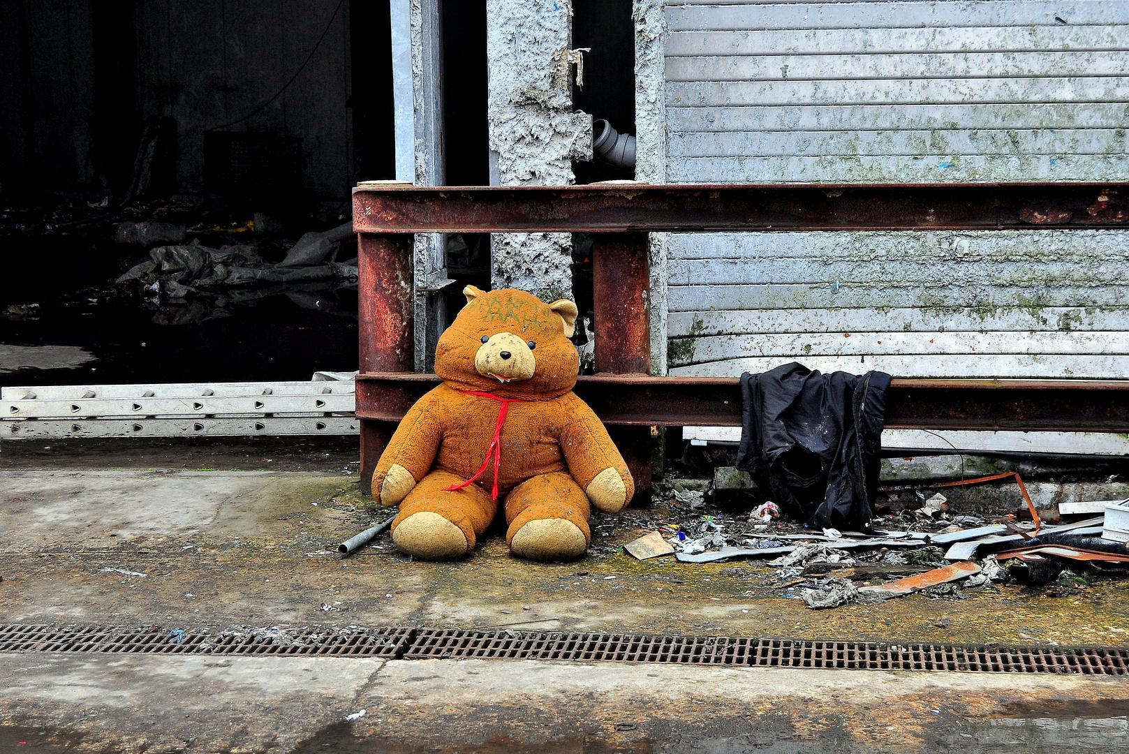 Verlassener Teddy