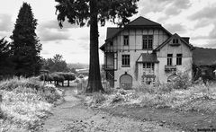 Verlassenes Bauerngut am Drachenfels