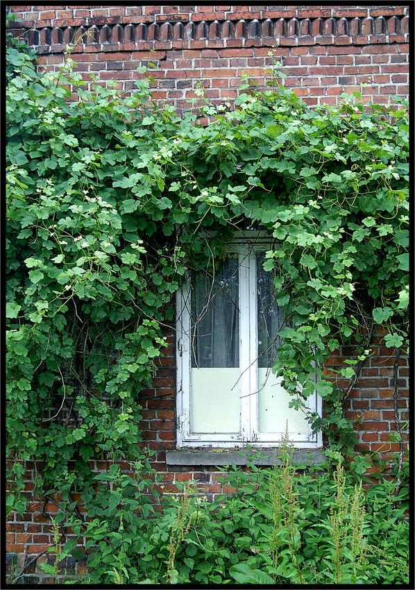 Verlassenes Bauernhaus :