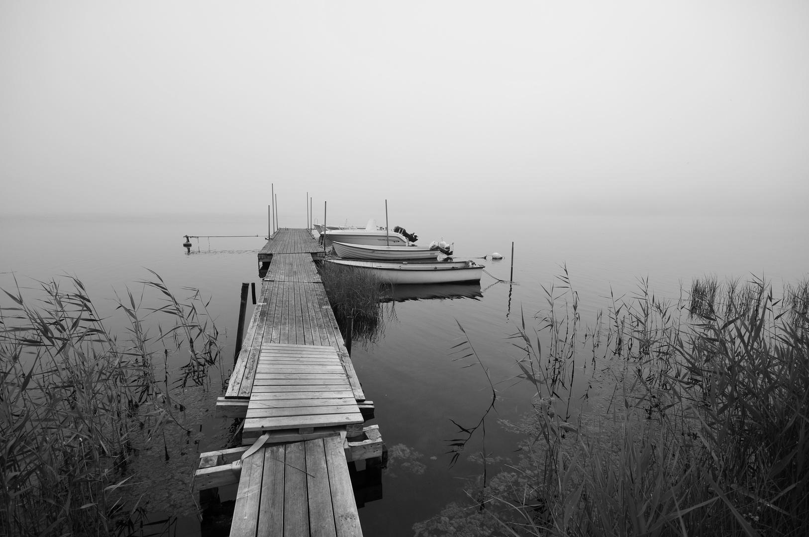 verloren im Nebel