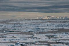 Verloren in der Eiswüste