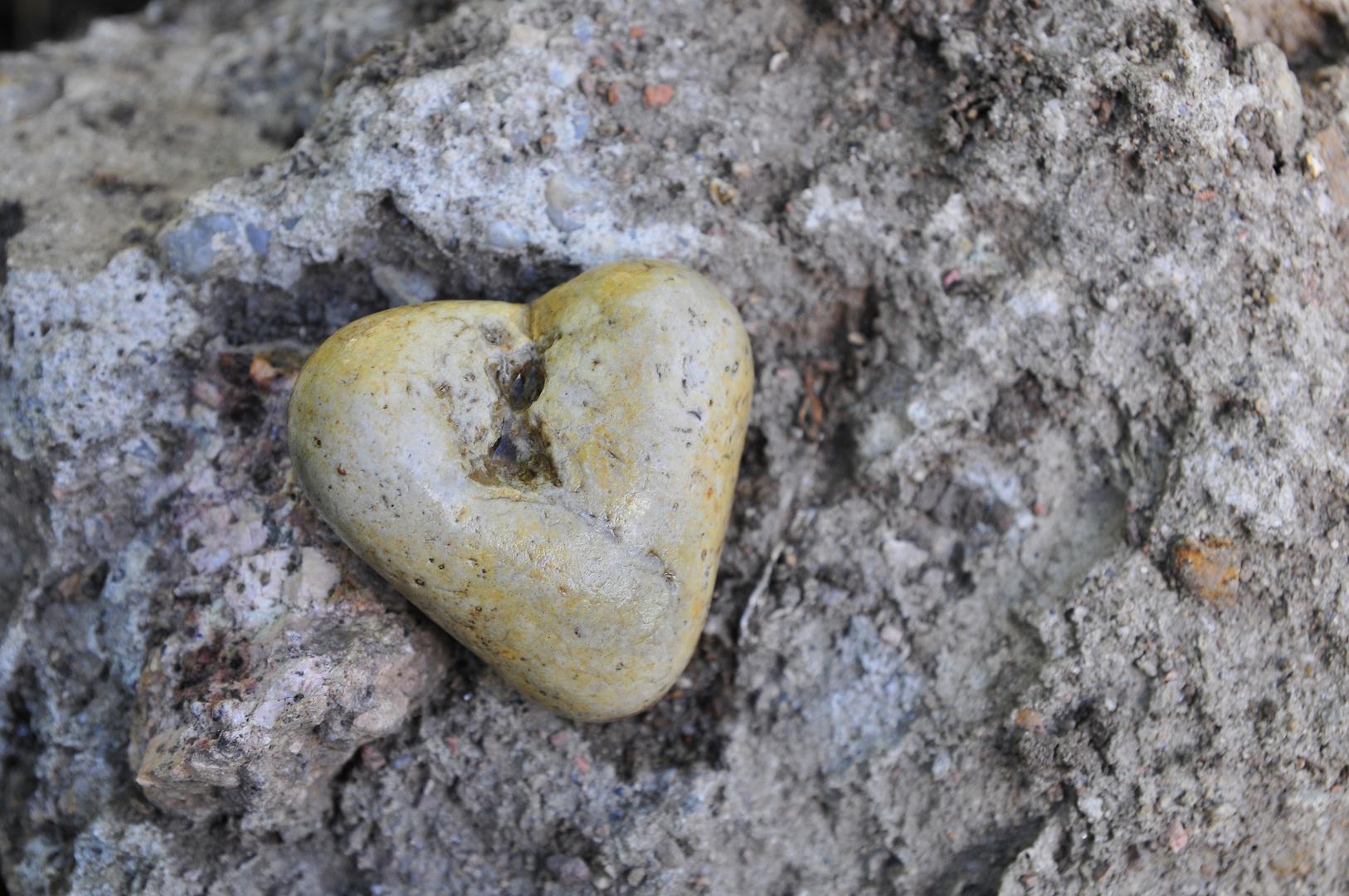 Verlorenes Herz