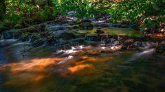 Verlorenwasser Bach