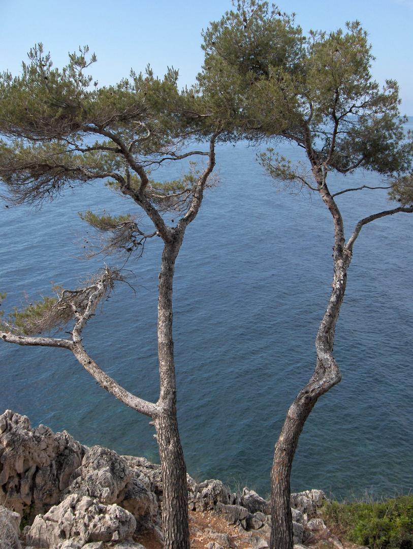 Vers la mer...