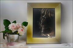 »verschleierte Erinnerung«