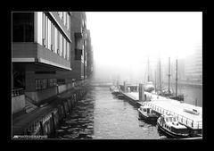 Verschleierte HafenCity