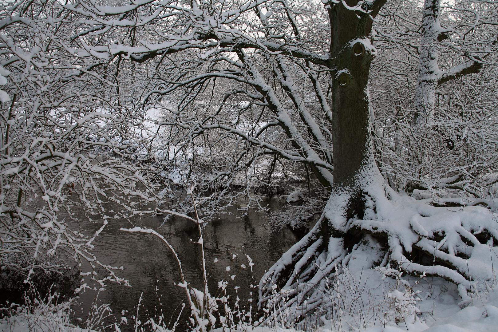- Verschneit -