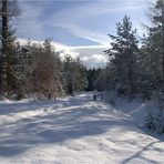 Verschneite Rhön