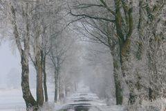 Verschneiter Feldweg