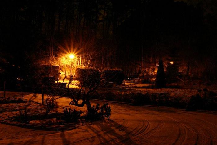 Verschneiter Januargarten 4.30 Uhr