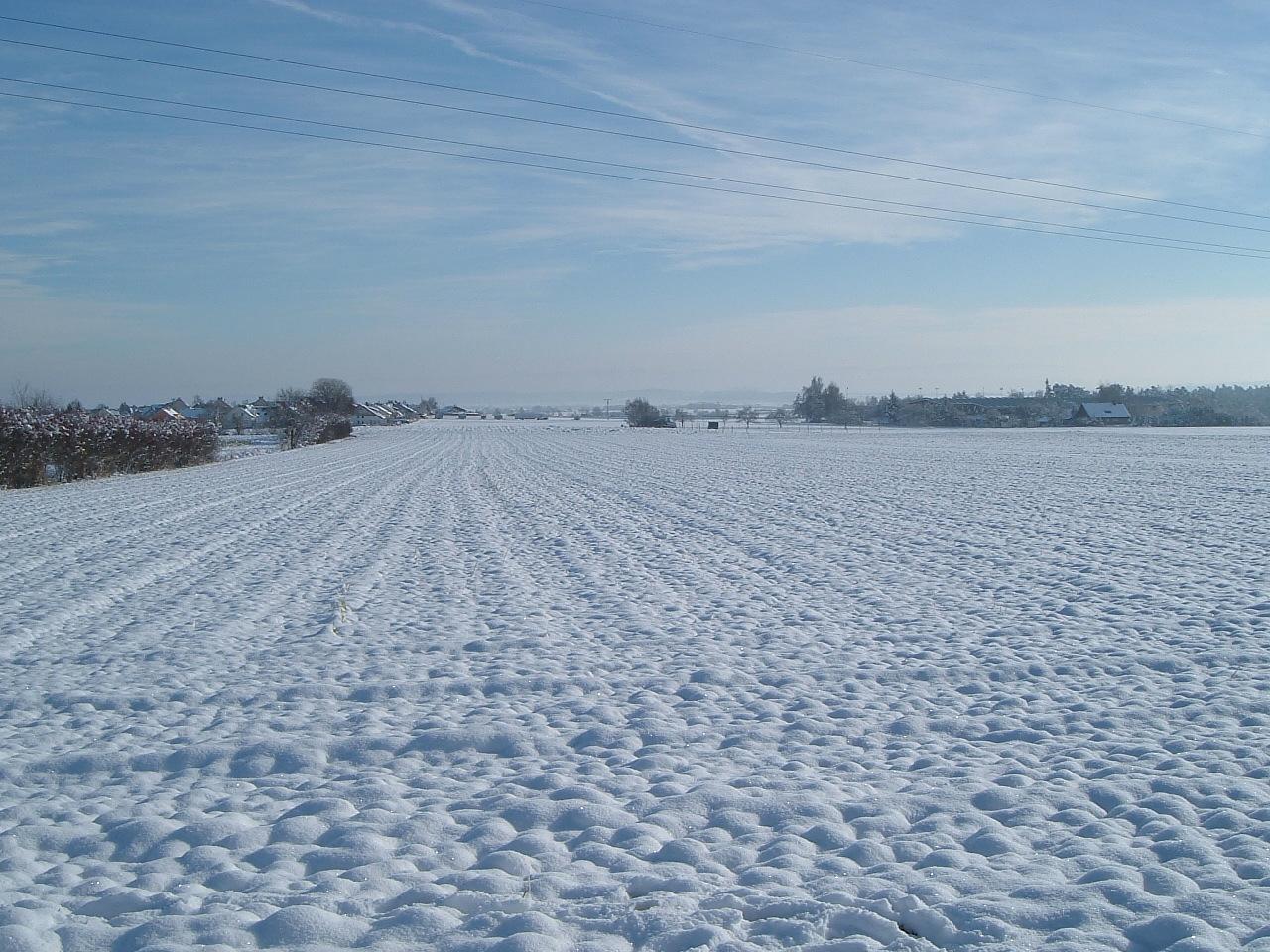 Verschneites Feld