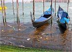 Versinkt Venedig im Müll?