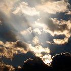 Verso il cielo...