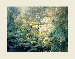 Verso l'autunno!!!...