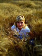 versteckspiel im kornfeld