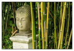Versteckt im Bambuswald
