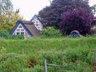 Versteckte Häuser hinterm Lühedeich