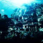 Versunkenes Atlantis 2013