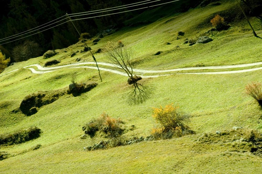 Vert montagne
