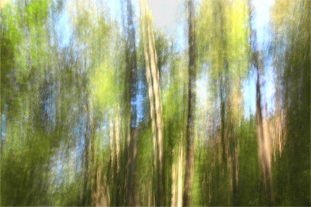 vertical movement