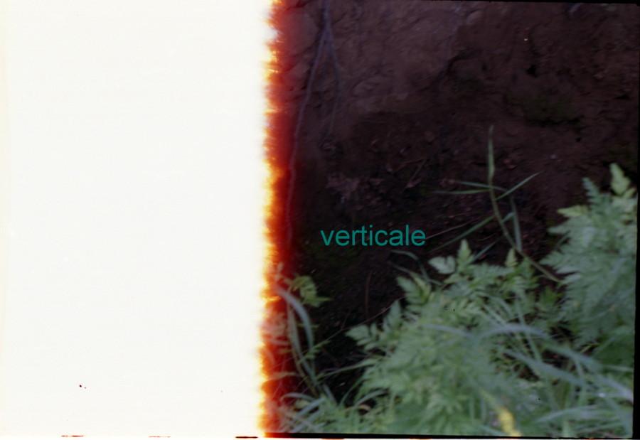 vertikale