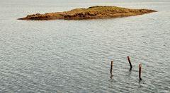verwunschene Insel im See mit hölzernen Suchern