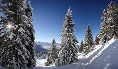 ~ Verzauberte Bergwelt ~