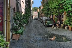 Via Margutta Gasse in Rom