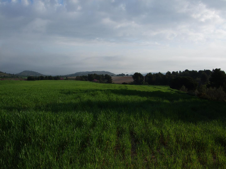 Vía Verde de Bullas a Cehegín (MURCIA)