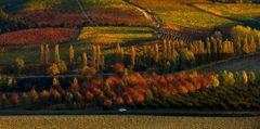 viaggio d'autunno