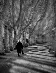 Viaggio nella solitudine