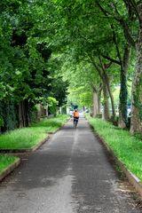 Viale Cesare Battisti, Monza