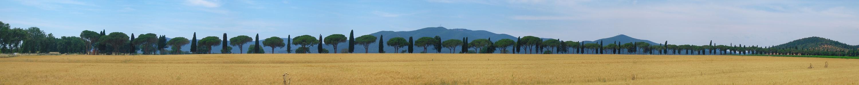 Viale dei Cipressi - Panorama