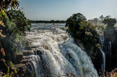 Shongololo - Africa