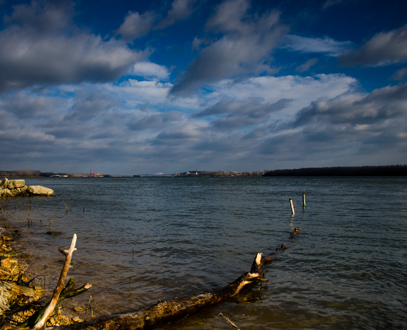 Vidin Dunav