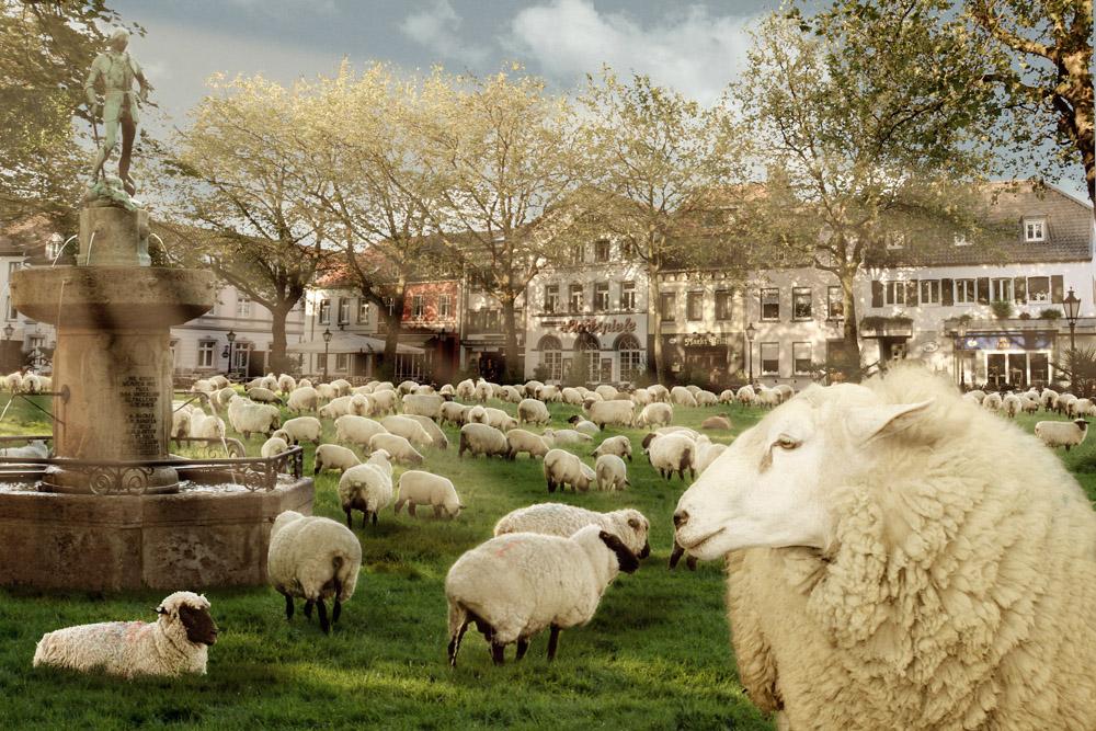 Viehmarkt in Kempen
