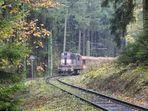 """""""Viel Betrieb an der Waldbahn"""""""
