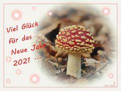 Viel Glück im *Neuen Jahr 2021* ...