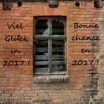 Viel Glück in 2017 !