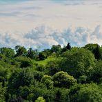 viel grüne Natur  und am Horizont ,